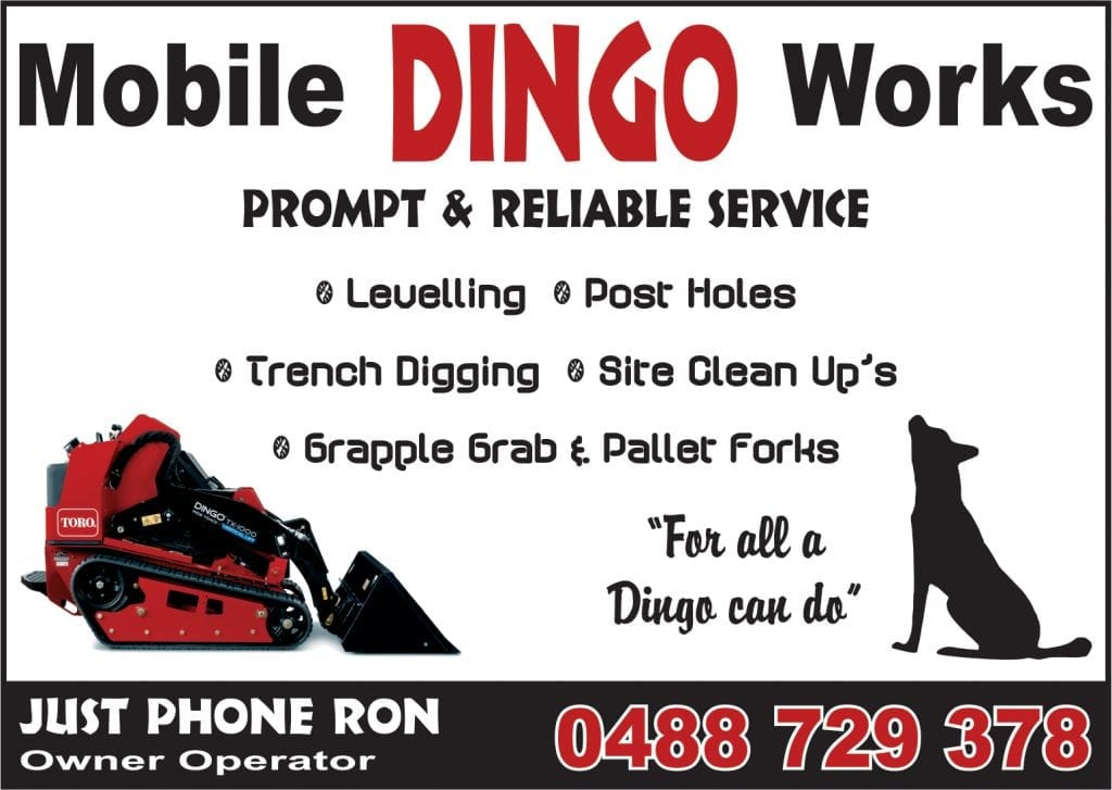 Dayboro Mobile dingo Works