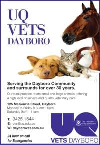 UQ Vets Dayboro (animal hospital)