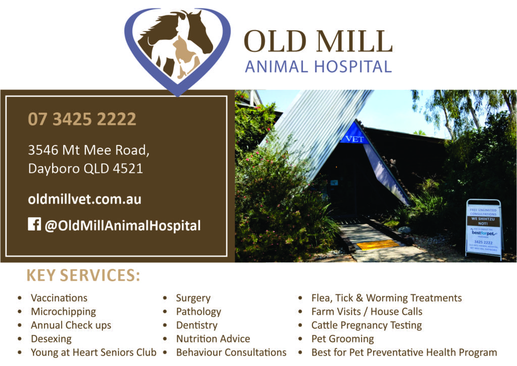 Old Mill Animal Hospital