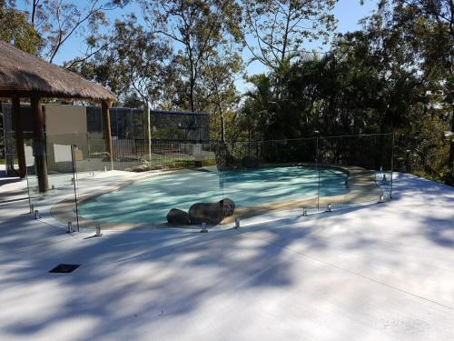 Lyhart Glass-Pool-Fence